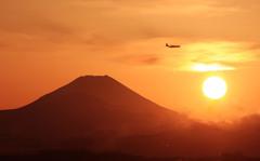落日の飛行