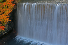 松川の堰(せき)