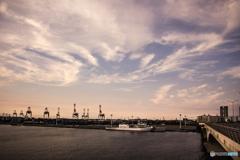 港のキリンたち