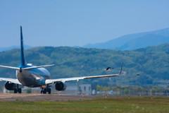 -Airplane-