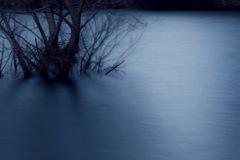 -silent-
