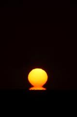 -Daruma Sun-