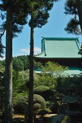 鹿野山 神野寺