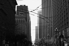 San Francisco ~Market St.~