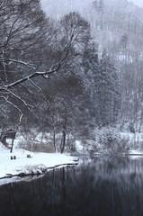 雪の降る湖畔