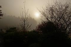 朝モヤの朝日