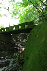 緑の境界線