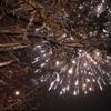 雪祭りの夜2010(冬花火編)