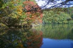 長老湖の紅葉