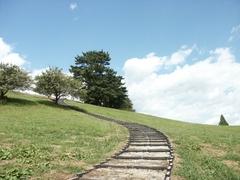 空へ続く階段