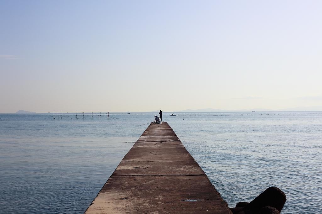 南知多の海と堤防