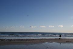 由比ガ浜の春