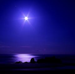 月夜の誘い ~izanai~