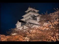 桜に浮かぶ城