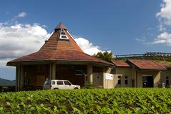 丘の喫茶店