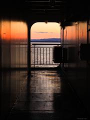 船上カメラマン