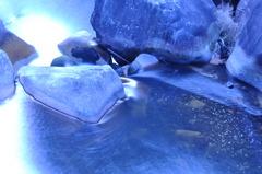 Water Lenz