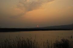 とある池に沈む夕日