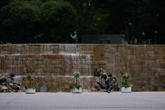 新宿ナイアガラの滝で