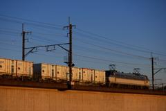 夕陽に染まるEF66と貨車