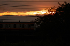 evening NAMBU LINE