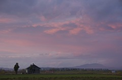 田舎の風景 4