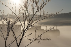 霧の風景 8