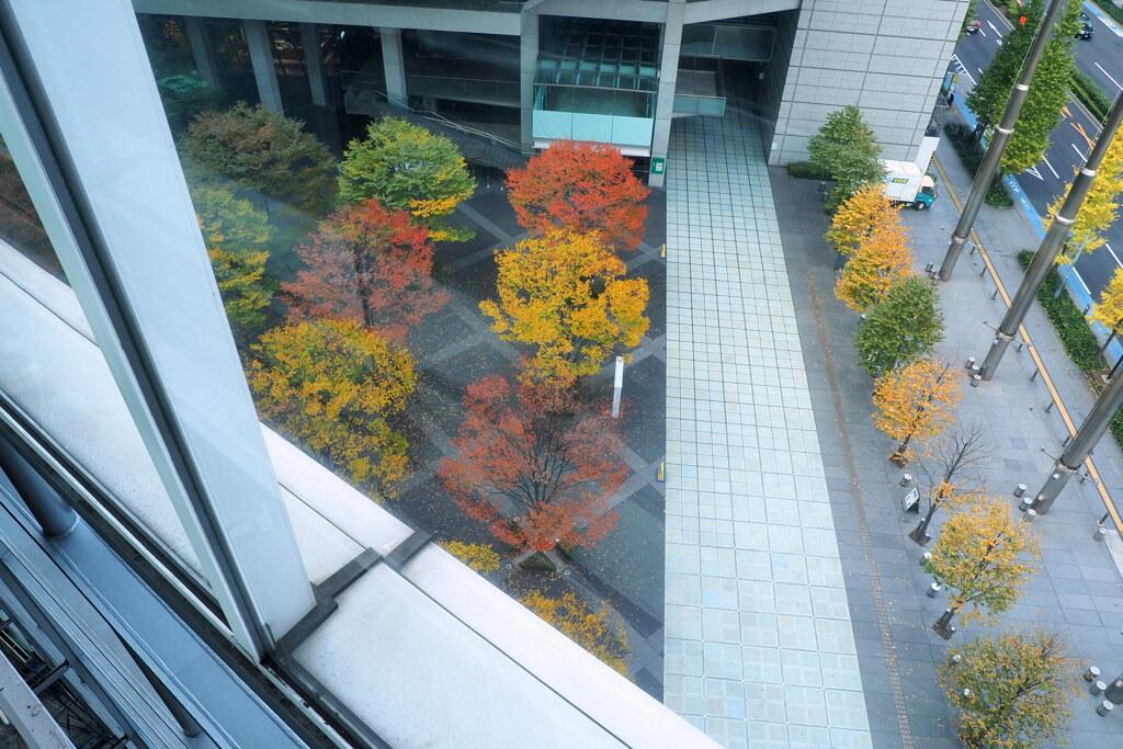 東京国際フォーラム 3