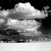 水田と雲 3