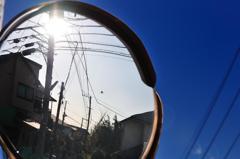 空と鏡と太陽とそして鳥