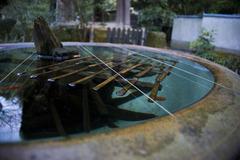 金魚鉢 開放
