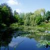 モネの日本趣味の庭園