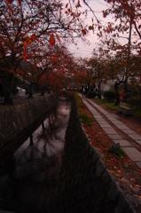 秋の夕暮れの哲学の道