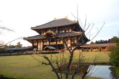 西日の差しこむ東大寺
