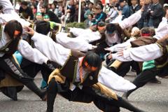 横浜よさこい祭