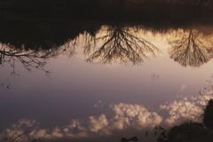 早朝の湖面