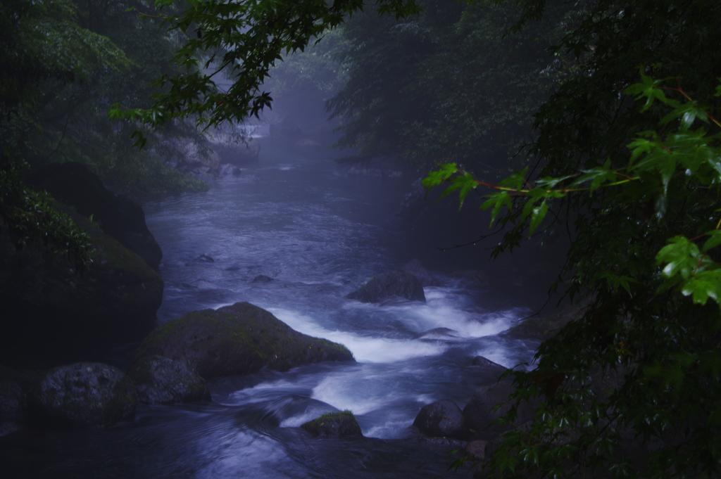 霧の中の渓谷