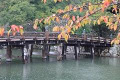 濡れる大手門橋