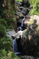 荒島谷川本流渓流