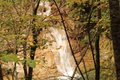 小親谷の滝 下流小滝下