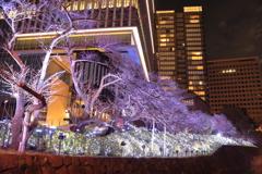 東京ガーデンテラス1