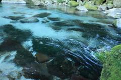 雄川の清流