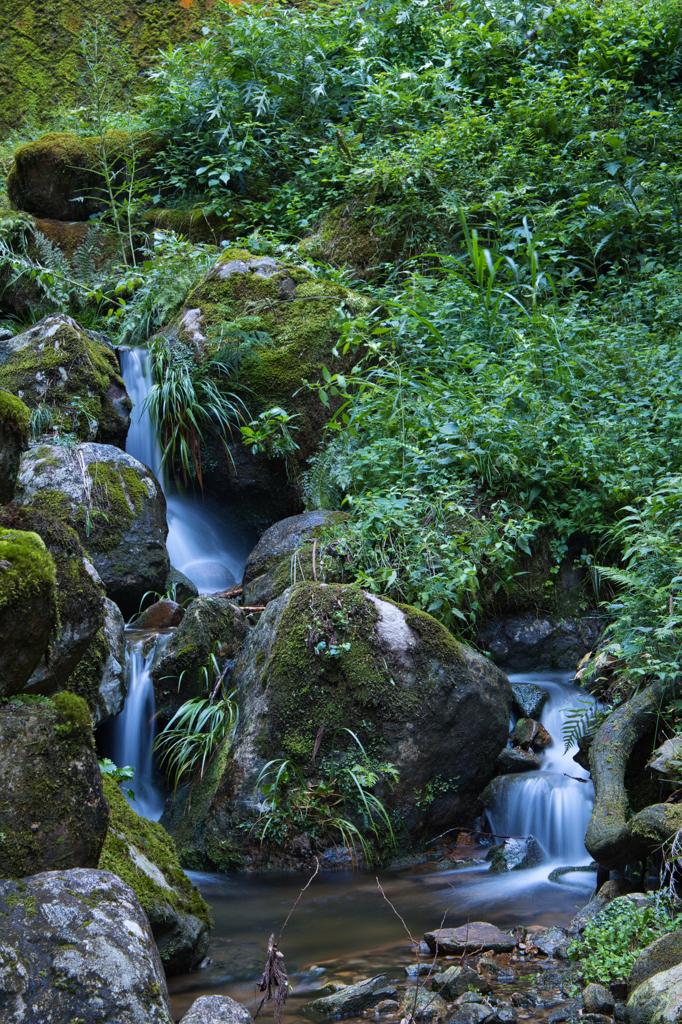 荒谷の滝渓流2