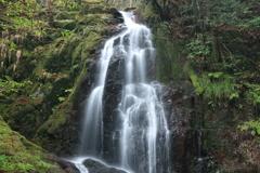 秋芳 白糸の滝 上段