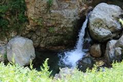 荒島谷川本流の滝状2