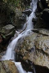 梅浦の無名滝2 中腹