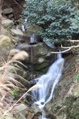 梅浦の無名滝2 下段
