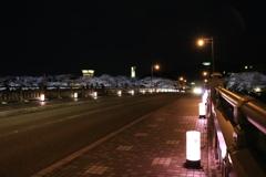 桜 橋 ライトアップ