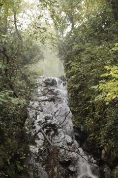 鯉谷滝 滝口