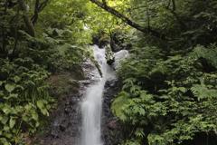 無名滝(滝口)